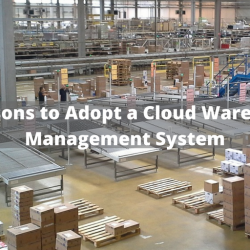 3 Reasons to Adopt a Cloud Warehouse Management System