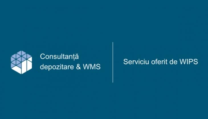 Consultanță depozitare și WMS