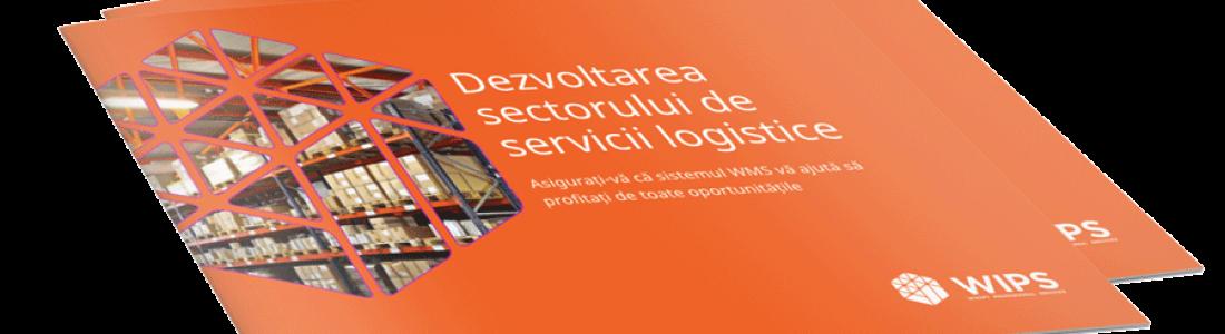[eBook gratuit] Gestiune depozite și optimizare stocuri pentru operatori logistici