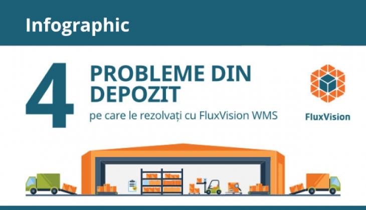Infografic – 4 Probleme dindepozit pe care le rezolvați cu FluxVision WMS
