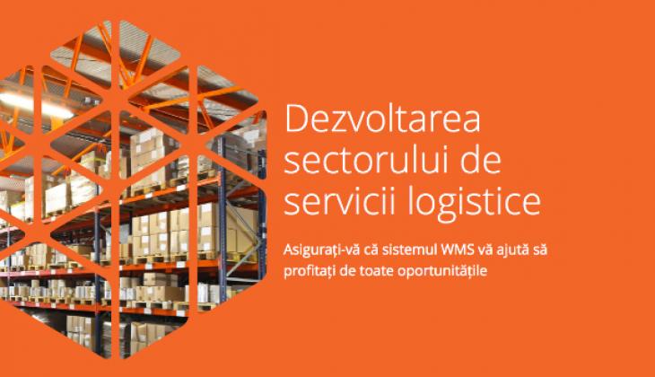 eBook –  Dezvoltarea sectorului de servicii logistice