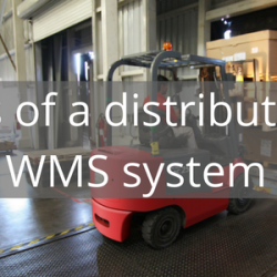 The features of a distribution oriented WMS system