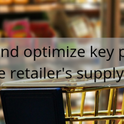 Manage and optimize key processes for the retailer's supply chain